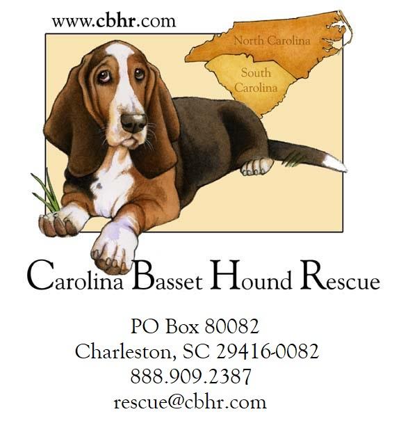Home - Carolina Basset Hound Rescue